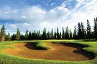 Coyote Creek Golf & RV Resort - Coyote Nine #7
