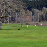 A view from Mount Douglas Golf Course