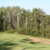 A view of green #5 at Barrhead Golf Club