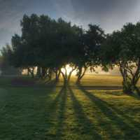 A sunrise view through the trees on the 1st and 8th holes at Edmonton Garrison Memorial Golf & Curling Club