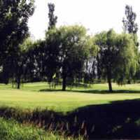 A view of a green at Willows Nine from Surrey Golf Club