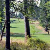 A view of a tee and a fairway at Quadra Island Golf Club