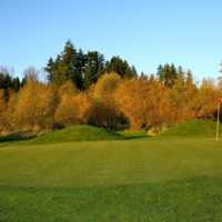 A view of a hole at Birdies & Buckets Family Golf Centre