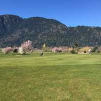 A spring view of a green at Royalwood Golf Club
