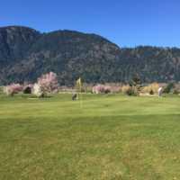 A spring view of a green at Royalwood Golf Club