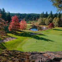 View of a green and pond at Fairwinds Golf Club