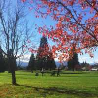 A fall day view of a fairway at Crown Isle Golf Course