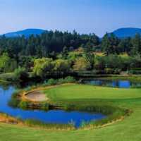 A view of a green surrounded by water at Arbutus Ridge Golf Club