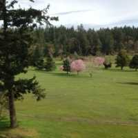 A spring day view from Pender Island Golf and Country Club