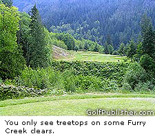 Furry Creek Treetops