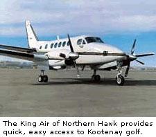 The King Air
